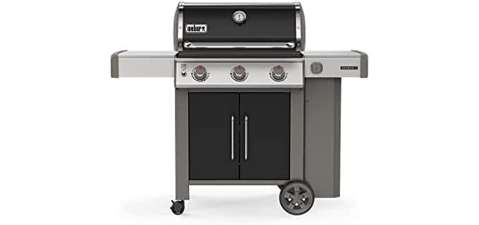 Weber 61015001 - Gas Grill